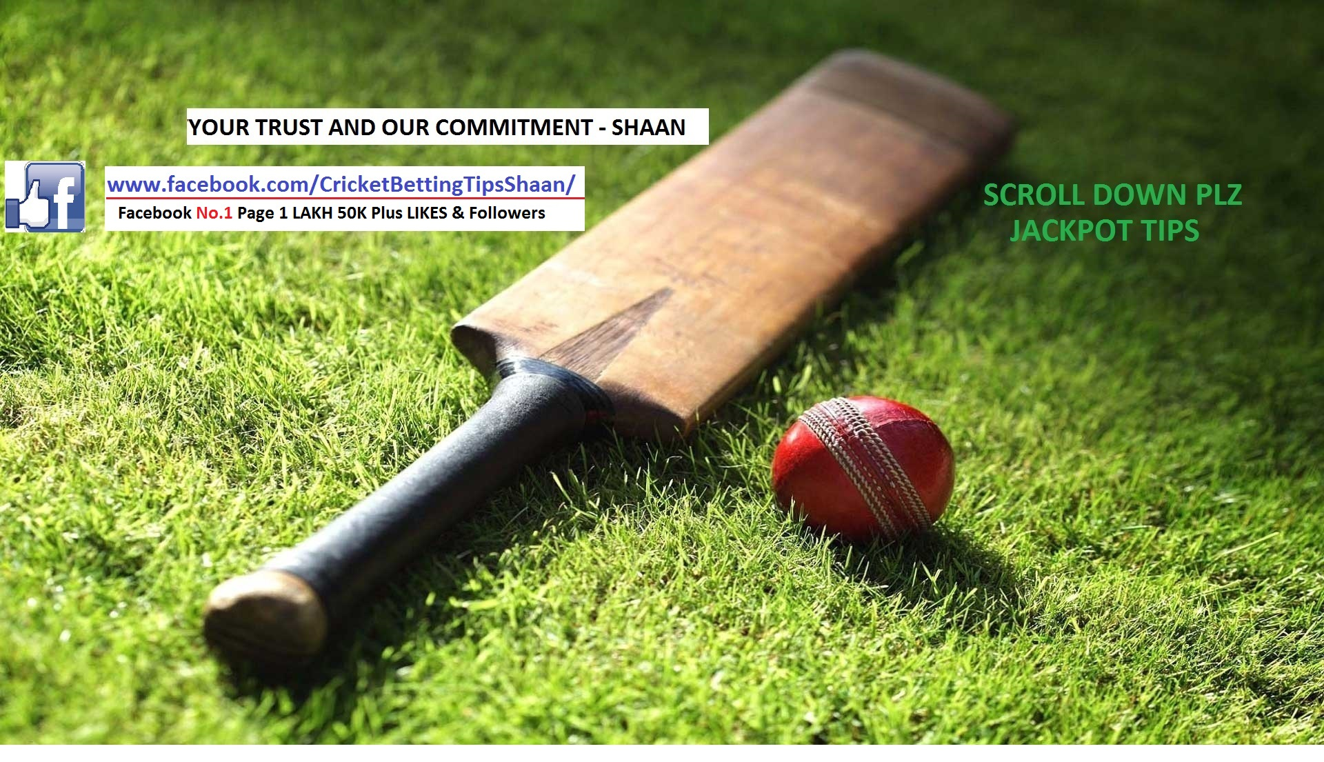 cricket betting tips free help online guide - cbtf shaan HOME TIPS BANNER
